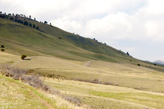 Rolling Hills im Spiel der Leuchte Stockfotografie