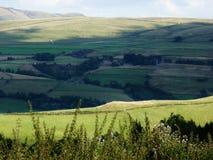 Rolling Hills jordbruksmarkskugga över kullen Arkivfoto