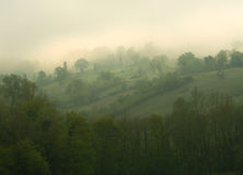 Rolling hills in the mist Stock Photography