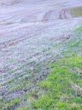 Rolling Hills na mola adiantada fazem um fundo abstrato reconfortante fotografia de stock