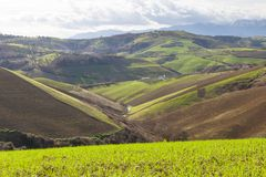Rolling hills of Italy Stock Photography