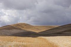 Rolling hills near Colfax, Washington. The rural landscape of the Palouse region near Colfax, Washington stock image
