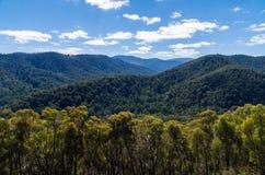 Rolling hills near Warburton, Victoria, Australia Royalty Free Stock Photo