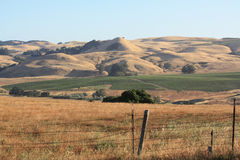 Rolling hills and old fence stock images