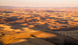 Rolling Hills Palouse Region Washington State Farmland Royalty Free Stock Image