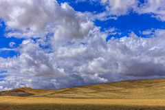 Rolling hills in the Palouse. Royalty Free Stock Image