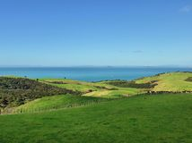 Rolling hills. In Shakespear Regional Park near Auckland Stock Images