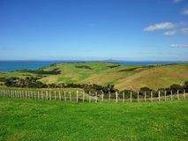 Rolling hills. In Shakespear Regional Park near Auckland Stock Photo