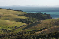 Rolling hills in Shakespear Regional Park Royalty Free Stock Photos