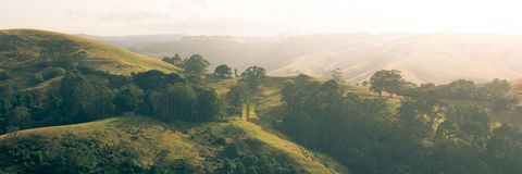 Rolling hills at sunrise. Golden light over some rolling country hill in victoria australia Royalty Free Stock Photos