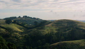 Rolling hills at sunrise. Golden light over some rolling country hill in victoria australia Stock Photography