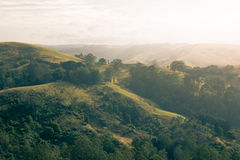 Rolling hills at sunrise. Golden light over some rolling country hill in victoria australia Stock Image