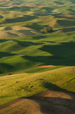 Rolling hills in sunset stock images