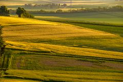 Rolling hills on sunset. Rural landscape. Green fields and farmlands, fresh vibrant colors. At Rhine Valley Rhine Gorge in Germany Royalty Free Stock Image