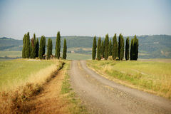 Rolling Hills in Toscana Immagini Stock