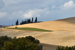 Rolling Hills, Tuscany Stock Images