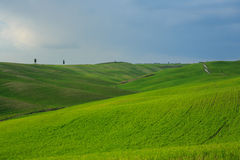 Rolling Hills of Tuscany, Italy Royalty Free Stock Images