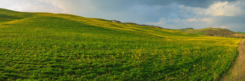 Rolling Hills of Tuscany, Italy Stock Photography