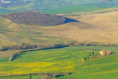 Rolling Hills of Tuscany, Italy Stock Photos