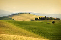 Rolling hills in Tuscany  Royalty Free Stock Photography