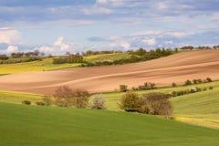 Rolling Hills und Felder Stockfotos