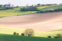 Rolling Hills und Felder Lizenzfreie Stockbilder