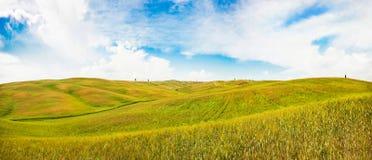 Rolling Hills in Val-d'Orcia, Toskana, Italien Lizenzfreie Stockfotos