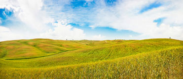 Rolling hills in Val d'Orcia, Tuscany, Italy Royalty Free Stock Photos
