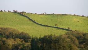 Rolling Hills verde in Irlanda con le pareti di pietra stock footage