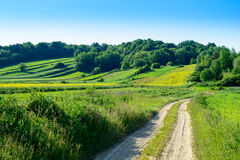 Rolling Hills verde in Roztocze, Polonia Fotografia Stock Libera da Diritti