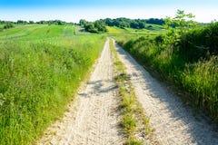 Rolling Hills verde in Roztocze, Polonia Fotografia Stock