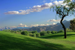 Rolling Hills Vista. A scenic view of rolling hills with mountains in the distance Stock Photo
