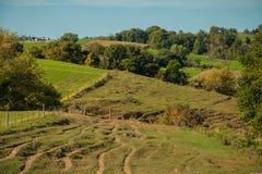 Rolling Hills von Iowa-Ackerland Stockfoto