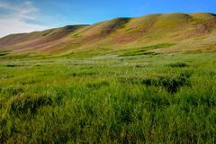 Rolling hills in western high-grass prairie Stock Photo