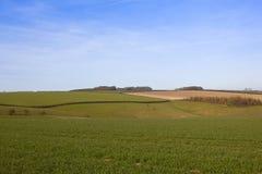 Rolling Hills in Yorkshire Lizenzfreie Stockbilder
