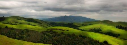 Rolling hillside pasture Stock Image