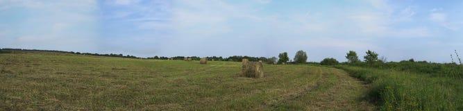 Rolling hooibergen in platteland Royalty-vrije Stock Fotografie
