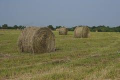 Rolling hooibergen in platteland Royalty-vrije Stock Afbeeldingen