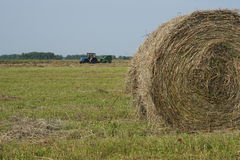 Rolling hooibergen in platteland Stock Afbeelding