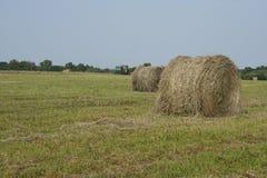 Rolling hooibergen in platteland Stock Fotografie