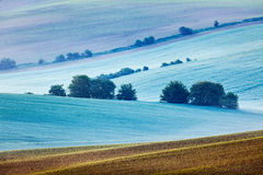 Rolling landscape of  South Moravia in the morning Royalty Free Stock Image