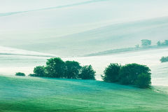 Rolling landscape of  South Moravia in the morning Royalty Free Stock Photo