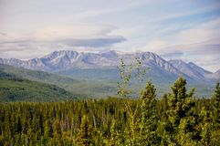 The rolling landscape of the Yukon, Canada. The green and lush rolling landscape of the Yukon, Canada royalty free stock photography