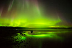 Rolling Lights. Layers of bright rolling northern lights reflecting in a lake Royalty Free Stock Photo