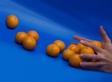 Rolling mandarines. On blue background Stock Image