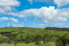 Rolling New Zealand farmland Royalty Free Stock Image