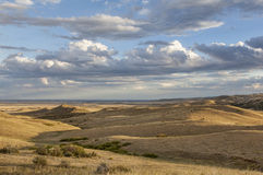 Rolling prairie in Colorado Stock Foto's