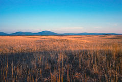 Rolling prarie. The evening sun highlighting the rolling prairie with Sugarloaf mountain in the background royalty free stock photos