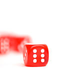Rolling red dice isolated on white. Studio shot Stock Photos