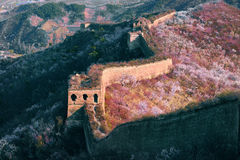 Rolling and ruined greatwall with flowers Stock Images